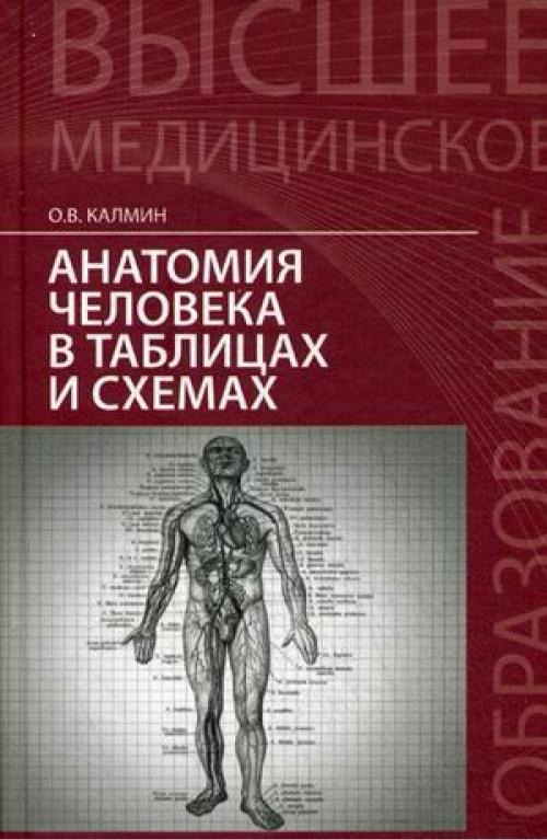 Анатомия человека в таблицах и схемах. Учебное пособие калмин.
